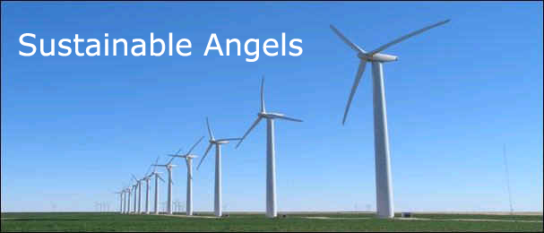 These are sustainable angels - each Wind Mill powers 300 homes with clean electricity!